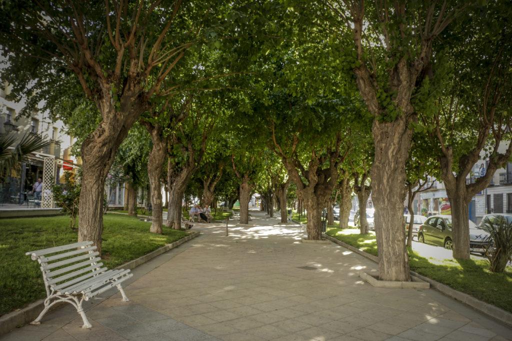 jardines de la estacion de padul 50 razones para visitar padul