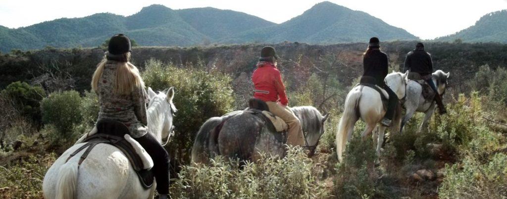 rutas a caballo valle de lecrin 7 planes en familia